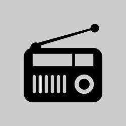 Schlagerradio FLAMINGO logo